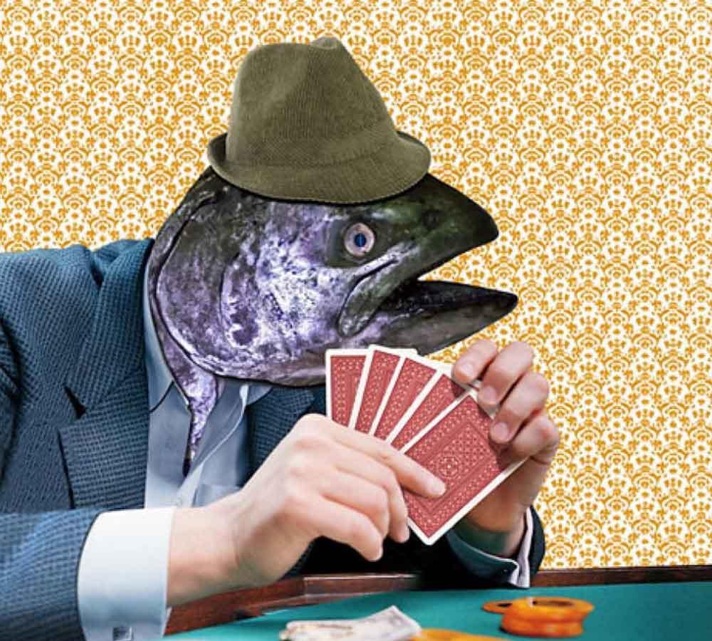 德州撲克概率 這20個數據!記不住就是條魚~